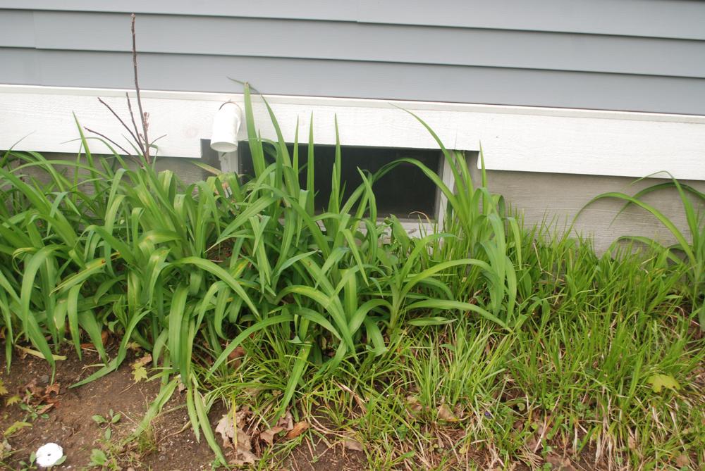 Kellerfenster einbruchsicher machen